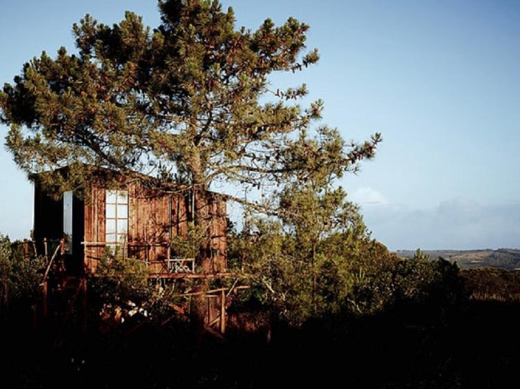 Into the Wild Algarve Glambing con encanto casa en el arbol