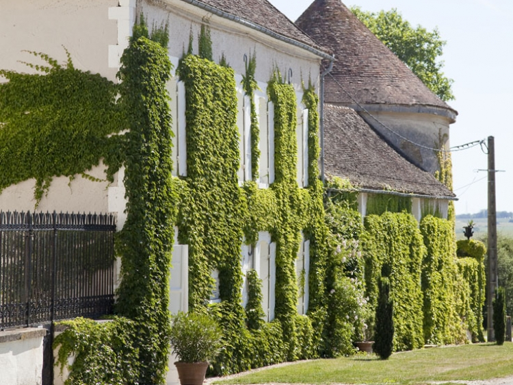 Chateau de la Resle Burgundy Hotel design con encanto