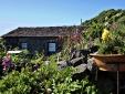 Aldeia da cuada flores casa rural apartamento con encanto azores