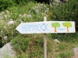 A shaded place in the garden