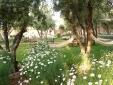 Les Jardins de Skoura Ouarzazate Riad hotel con encanto