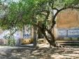 Pousada Palacio de Estoi Hotel Algarve hotel near the sea