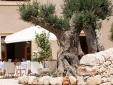 Borgo Alveria Hotel Noto Sicily con encanto