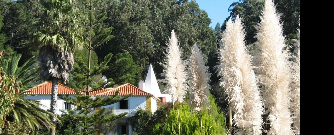 Quinta do Rio Touro